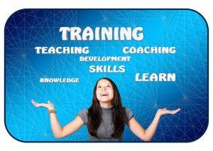 website-skills